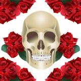 Moderne Art und Rosen des menschlichen Schädels Stockfotos