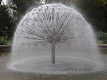 Moderne artezian fontein stock footage