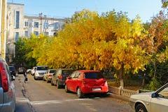 Moderne auto's in de herfstwerf in Volgograd royalty-vrije stock fotografie