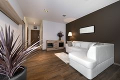 Moderne bruine binnenlandse ontwerpwoonkamer Royalty-vrije Stock Fotografie