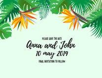 Moderne de uitnodigingskaart van het stijlhuwelijk met tropische exotische bloemen en bladerenkaderachtergrond, bloemenelementene stock illustratie