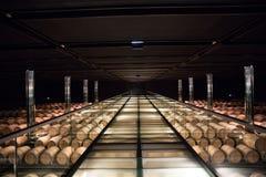 Moderne de wijnkelder van Chateauclos d'estournel, heilige Estephe, rechteroever, Bordeaux, Frankrijk Royalty-vrije Stock Foto's