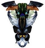 Moderne druk met vlinders, water, kristallen, insecten en vogelvleugels stock fotografie
