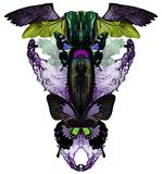 Moderne druk met vlinders, water, kristallen, insecten en vogelvleugels Royalty-vrije Stock Fotografie