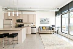 Moderne Eigentumswohnungküche und -wohnzimmer Stockfoto