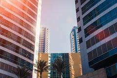 Moderne futuristische Wolkenkratzer mit Palmen in der Front lizenzfreie stockbilder