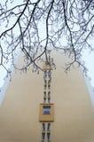 Moderne Gebäudefassade und -baum Lizenzfreie Stockfotos