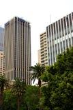 Moderne Gebäude und Bäume Stockfotos
