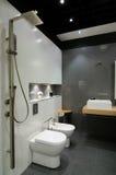 Moderne grijze badkamers Royalty-vrije Stock Foto
