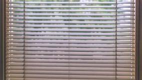Moderne hölzerne Vorhänge für Haus und Büro - alter Blick der Weinlese Stockbilder