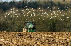 Moderne John Deere-tractor die die een ploeg trekken door meeuwen wordt gevolgd stock afbeeldingen