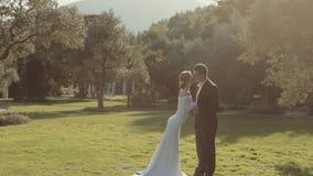 Moderne junge Hochzeitspaare amüsieren sich stock video