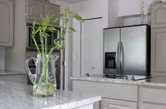 Moderne keuken met kruik bamboe op teller Royalty-vrije Stock Foto's