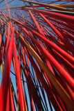 Moderne Kunst Melbourne Stockfotos