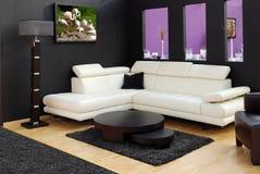 Moderne Möbel und Lampe Lizenzfreie Stockfotografie