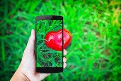 Moderne mobiele telefoon in de hand Stock Fotografie