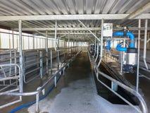 Moderne neue automatische Molkerei, die System milk Stockfotos