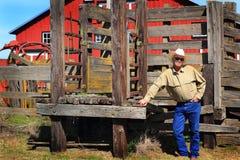 Moderne Ongeschoren Eigenaar van een ranch stock afbeelding