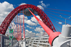 Moderne opschorting kabel-gebleven brug Stock Fotografie