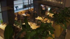 Moderne restaurantruimte met mensen vaag op de achtergrond Installaties in bloempotten die binnenkoffie op eerste verdieping kwek stock videobeelden