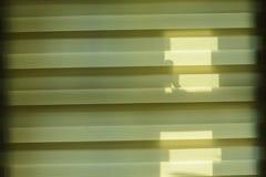 Moderne Sahnevorhänge im geomerty und modern mit glänzendem Stockfotografie
