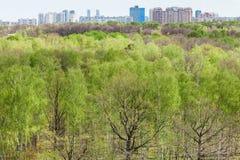 Moderne städtische Häuser und grüner Wald im Frühjahr Lizenzfreie Stockfotos