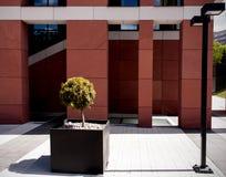 Moderne straatarchitectuur Royalty-vrije Stock Foto's