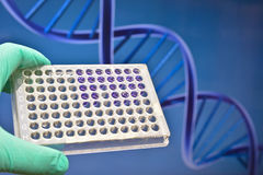 Moderne Technologie in einem wissenschaftlichen Labor lizenzfreie stockbilder