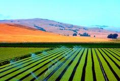 Moderne und Rechtecklinien in der Landwirtschaft Stockfotos