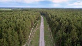 Moderne voertuigaandrijving langs grijze weg onder eindeloos bos stock videobeelden