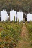 Moderne Weinkellerei. Stockfotos