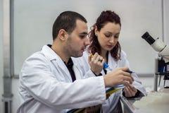 Moderne wetenschapper die met pipet in biotechnologielaborator werken stock foto