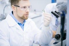 Moderne Wetenschapper Doing Research in Laboratorium royalty-vrije stock afbeelding