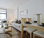 Moderne woonkamer met decoratie Stock Foto's