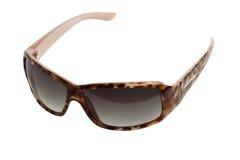 Moderne zonnebril Royalty-vrije Stock Foto