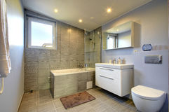 Moderner Badezimmerinnenraum Lizenzfreie Stockbilder
