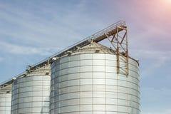 Moderner Bauernhofkomplex für die Speicherung des Kornes, der Getreide, des Mais und des Rapses, Landwirtschaft, Kegel, Nahaufnah stockfoto