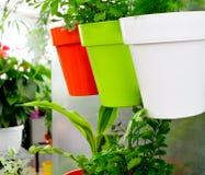Moderner Garten lizenzfreie stockbilder