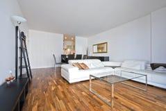 Moderner lebender Großraumbereich mit dem Speisen der Ecke Lizenzfreies Stockfoto