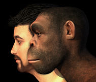 Moderner Mensch und Homo Erectus Mann verglichen Stockfotos
