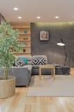 Moderner Raum mit grauer Couch Lizenzfreie Stockfotos