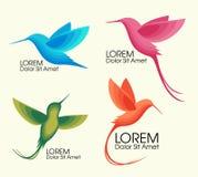 Moderner Satz Bunte Vögel, Colibri im Flug, modisches minimalistic Schablonendesign für Logos, Embleme, Symbole Stockfotografie