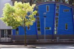 Modernes Gebäude und Baum Lizenzfreies Stockbild