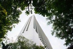 Modernes Gebäude in Windows von Bäumen Stockfotografie