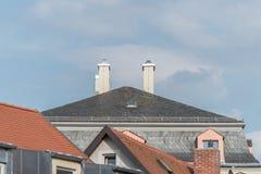 Modernes Schindelhaus mit Kamin und Blitzableiter Stockfotografie
