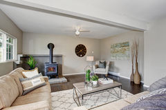 Modernized living room with fireplace, and fluffy rug. Stock Photos