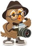 Moderno da coruja no chapéu e nos óculos de sol que guardam a câmera retro Fotógrafo do pássaro Fotografia de Stock Royalty Free