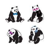 Moderno da panda Imagem de Stock