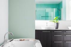 Modernt badrum genom att använda mjuka gröna pastellfärgade färger Arkivbilder