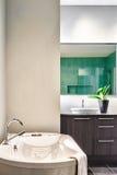 Modernt badrum genom att använda mjuka gröna pastellfärgade färger Royaltyfri Bild